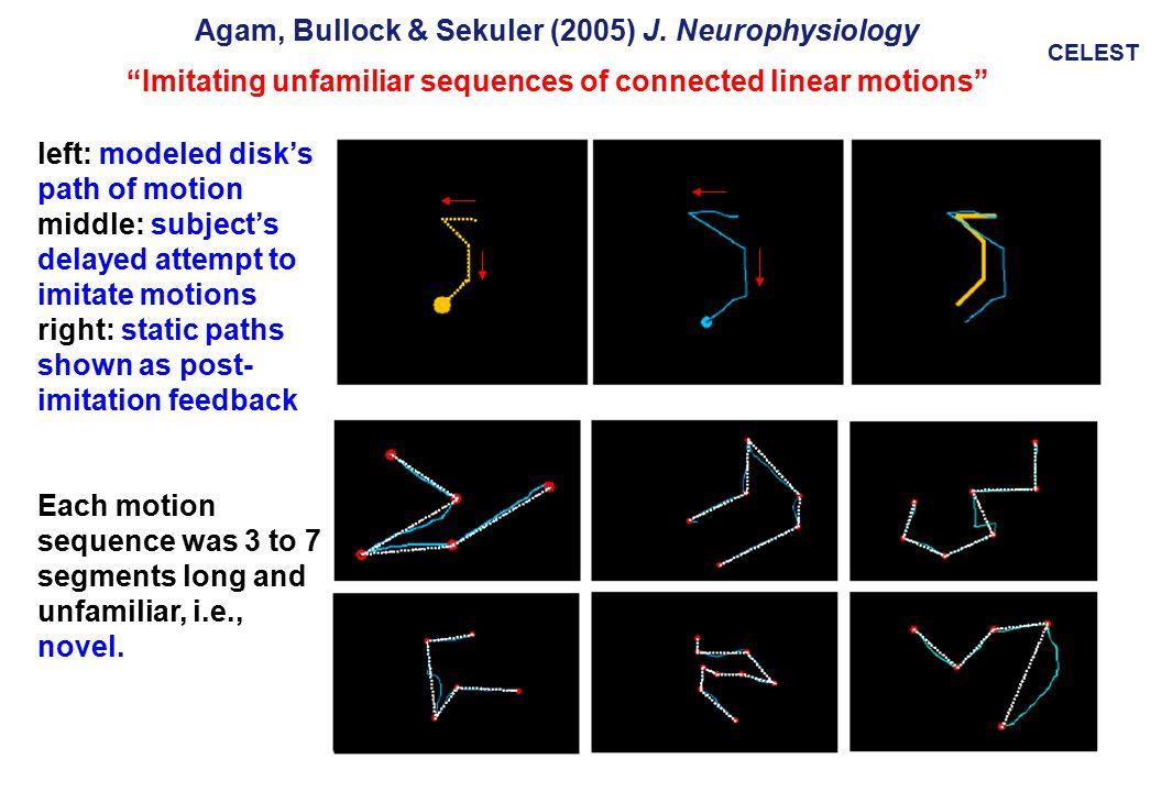 CELEST Agam, Bullock & Sekuler (2005) J.