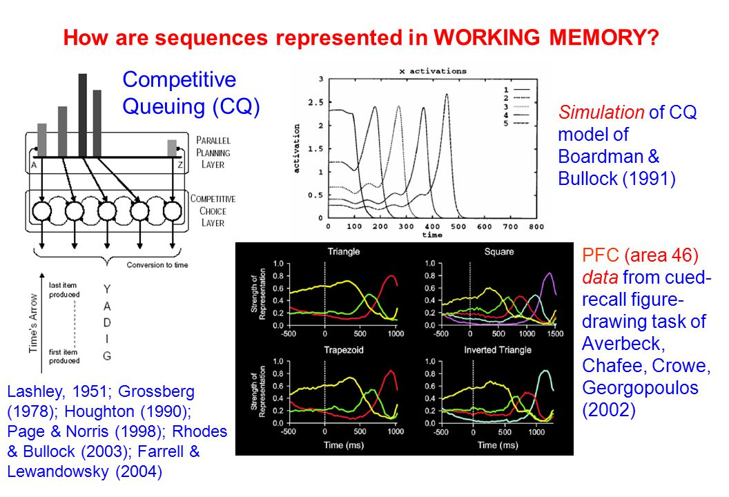 How are sequences represented in WORKING MEMORY.