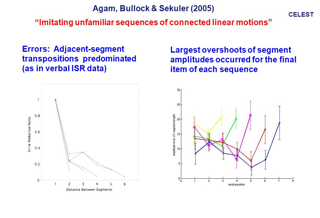 CELEST Agam, Bullock & Sekuler (2005) Imitating unfamiliar sequences of connected linear motions Largest overshoots of segment amplitudes occurred for the final item of each sequence Errors: Adjacent-segment transpositions predominated (as in verbal ISR data)
