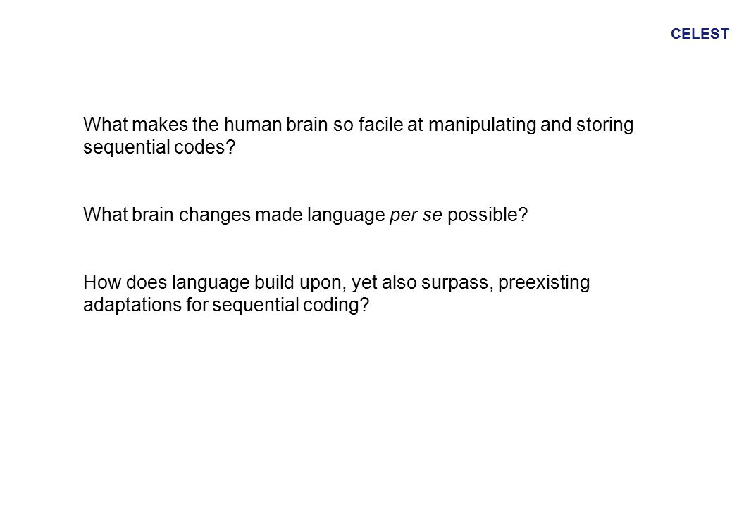 CELEST What makes the human brain so facile at manipulating and storing sequential codes.