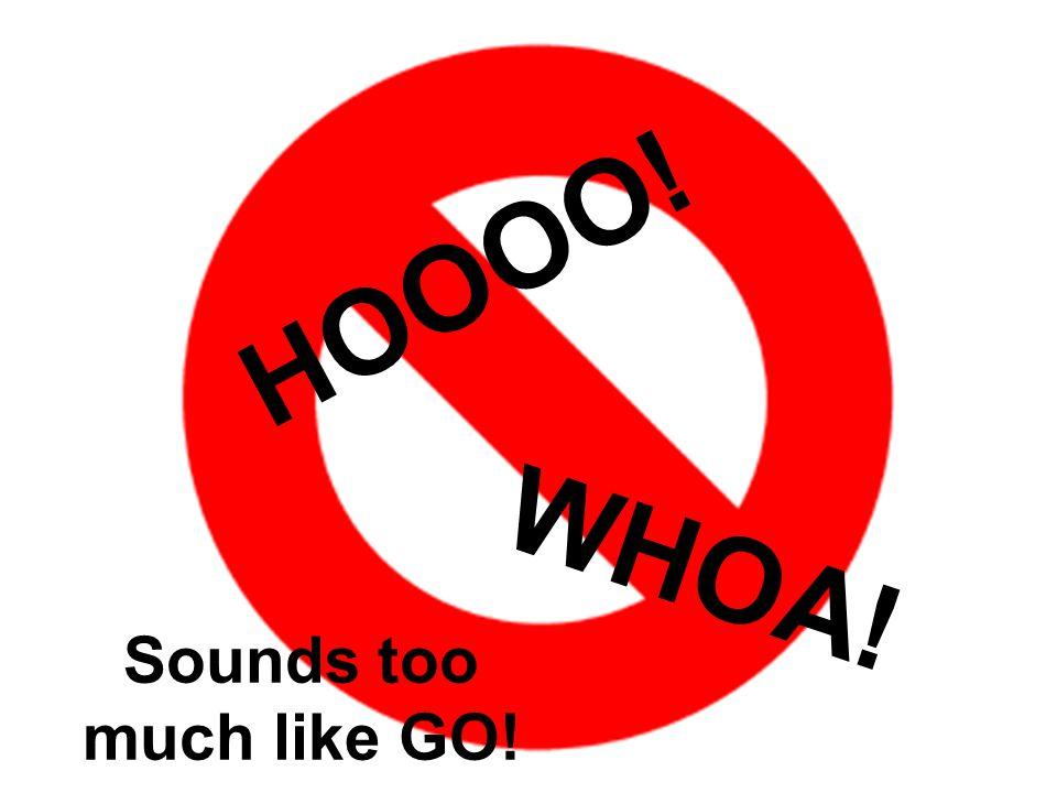 Sounds too much like GO! HOOOO! WHOA!