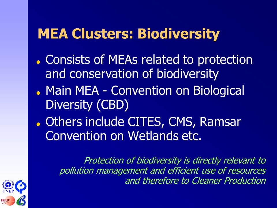 MEA Clusters: Biodiversity  Consists of MEAs related to protection and conservation of biodiversity  Main MEA - Convention on Biological Diversity (CBD)  Others include CITES, CMS, Ramsar Convention on Wetlands etc.