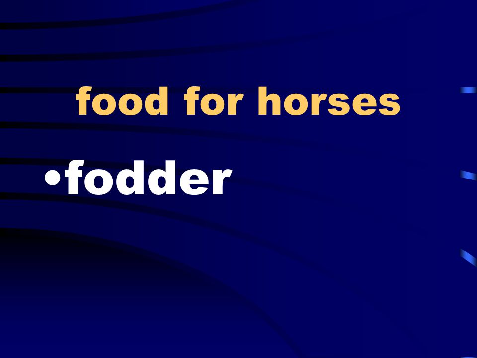 food for horses fodder