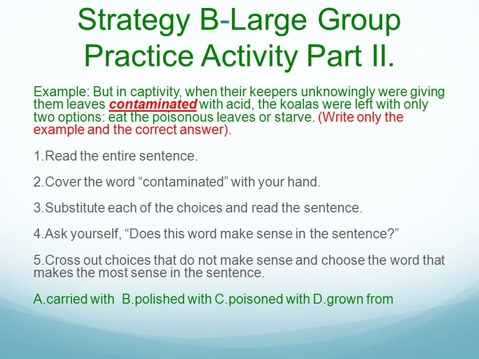 Strategy B-Large Group Practice Activity Part II.