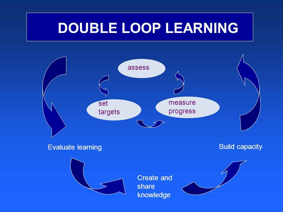 DOUBLE LOOP LEARNING measure progress set targets assess Evaluate learning Create and share knowledge Build capacity