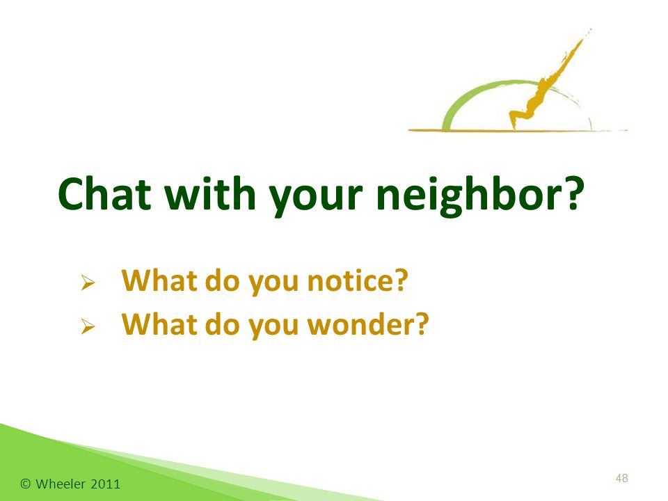 Chat with your neighbor  What do you notice  What do you wonder 48