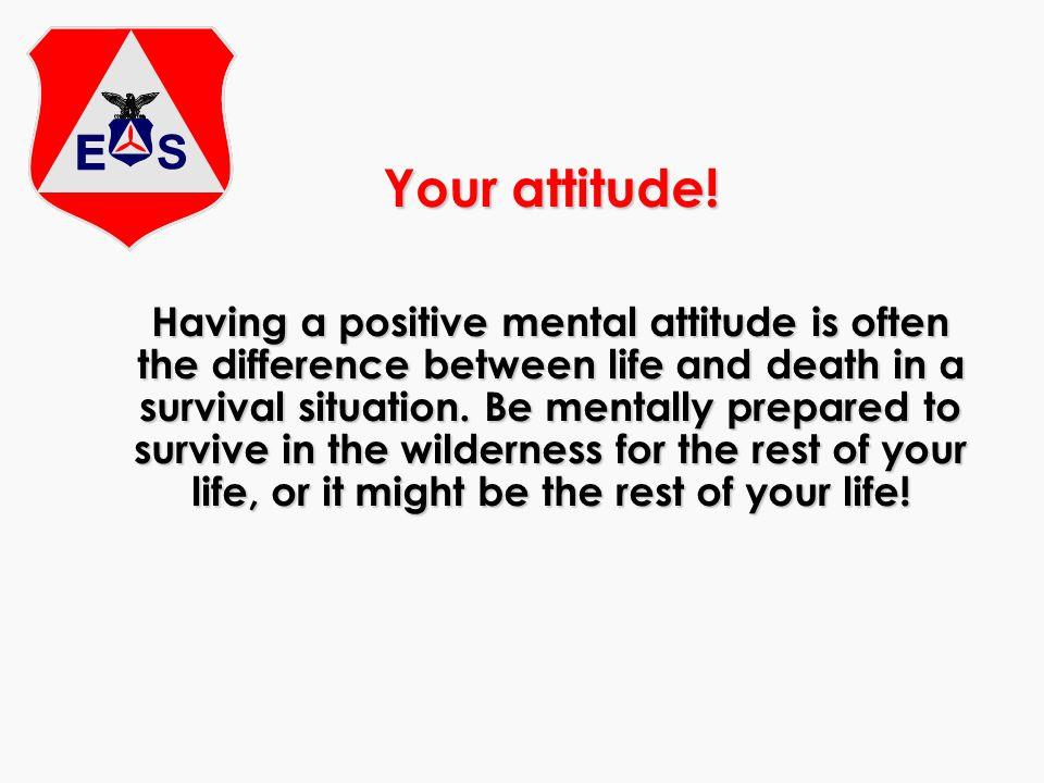 Your attitude.