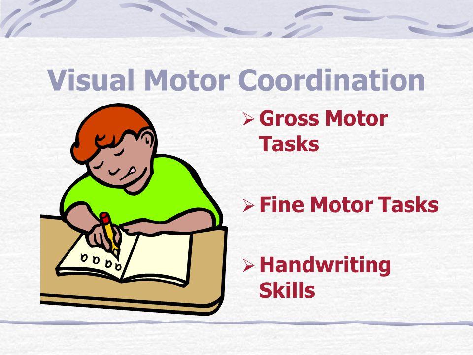 Visual Motor Coordination  Gross Motor Tasks  Fine Motor Tasks  Handwriting Skills