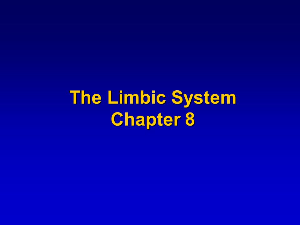 A limbus is a margin or border and the limbic system is a border zone where psychiatry meets neurology
