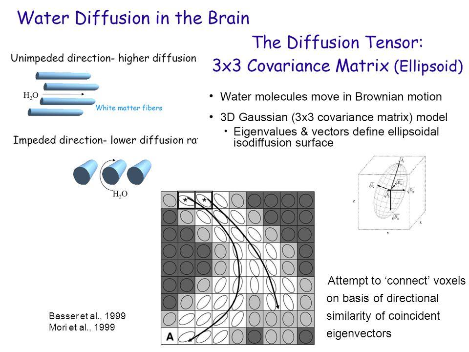 Basser et al., 1999 Mori et al., 1999 Attempt to 'connect' voxels on basis of directional similarity of coincident eigenvectors