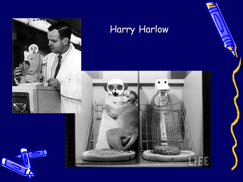 Harryrry Harry Harlow