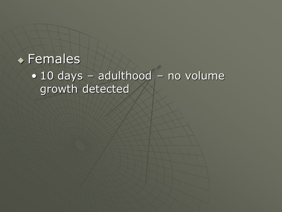  Females 10 days – adulthood – no volume growth detected10 days – adulthood – no volume growth detected