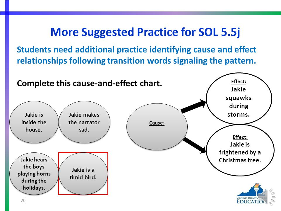 More Suggested Practice for SOL 5.5j Students need additional practice identifying cause and effect relationships.