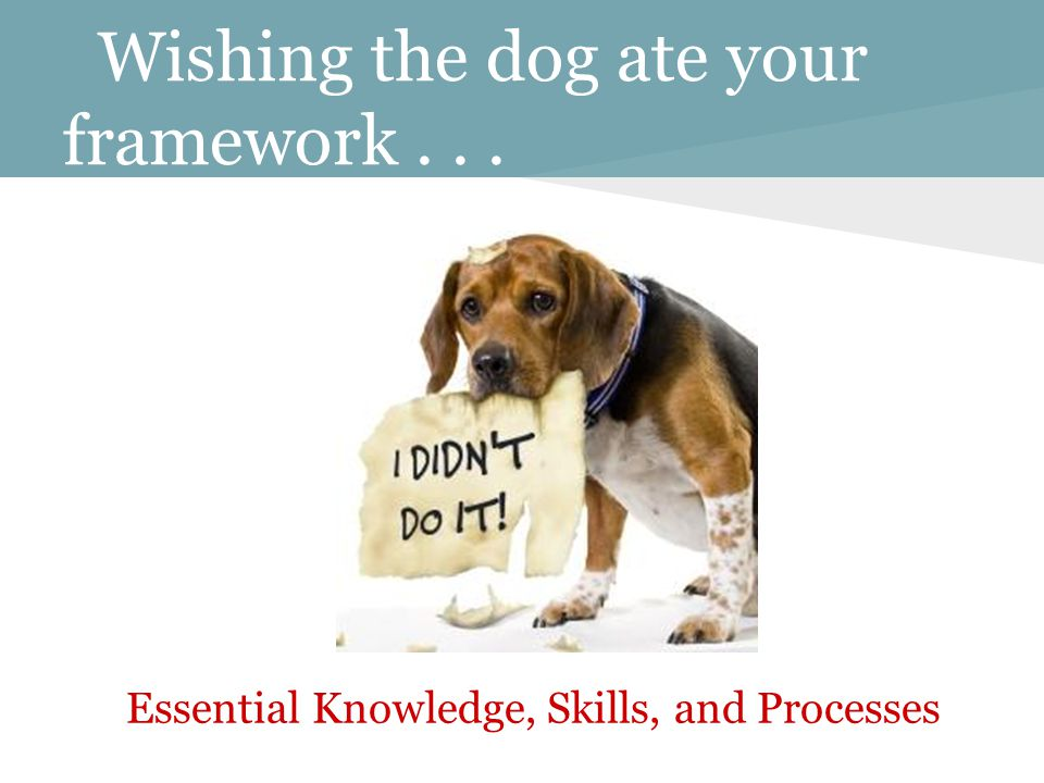 Wishing the dog ate your framework... Essential Knowledge, Skills, and Processes