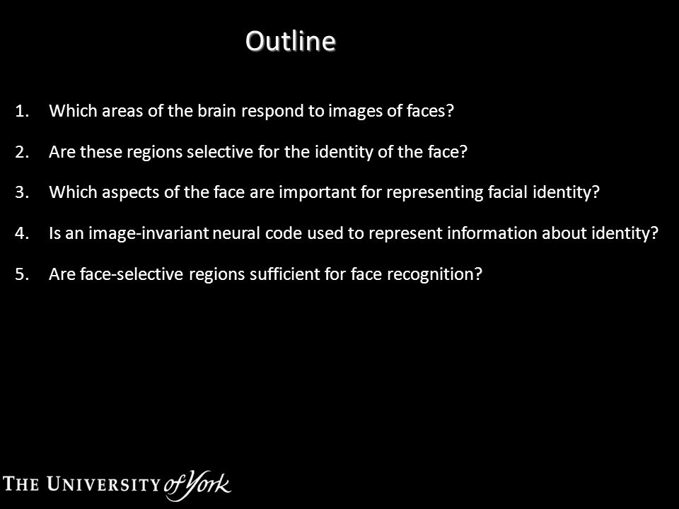 Outline 1.Which areas of the brain respond to images of faces.