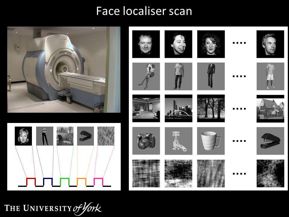 Face localiser scan