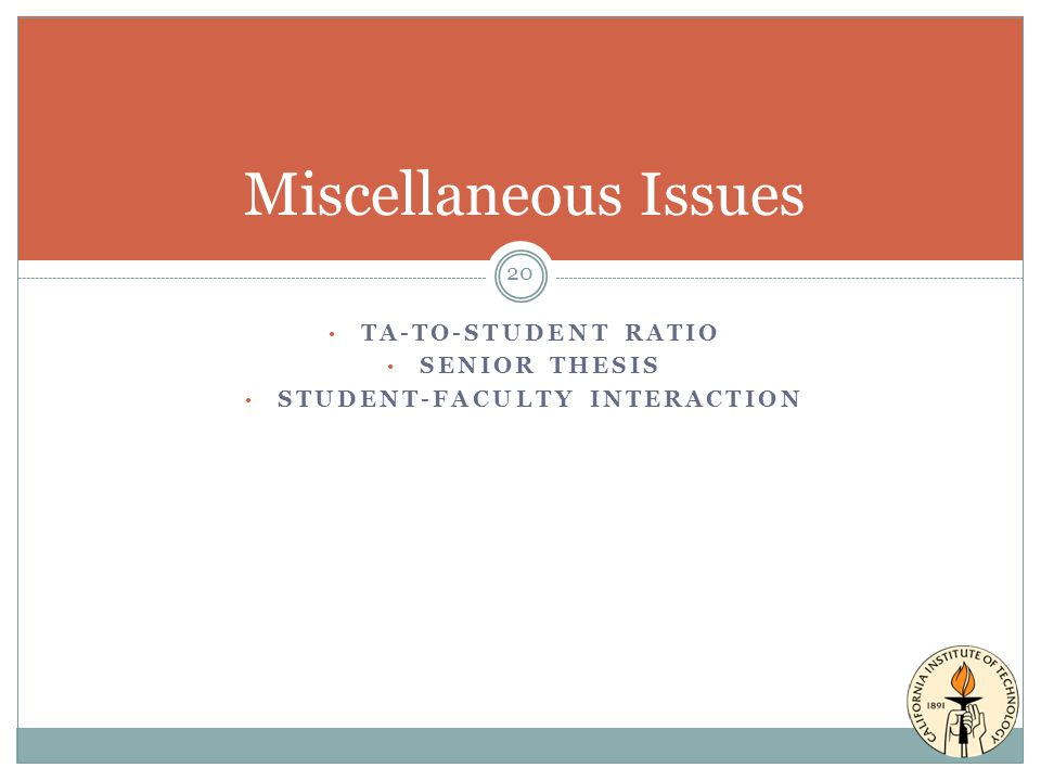 TA-TO-STUDENT RATIO SENIOR THESIS STUDENT-FACULTY INTERACTION Miscellaneous Issues 20