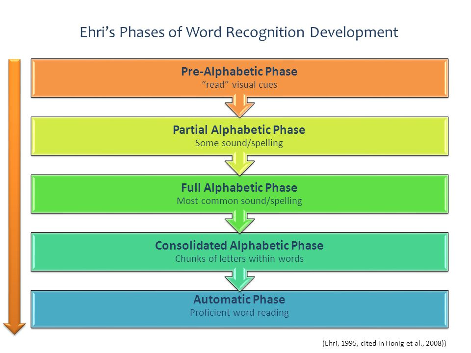 Ehri's Phases of Word Recognition Development Automatic Phase Proficient word reading Consolidated Alphabetic Phase Chunks of letters within words Ful