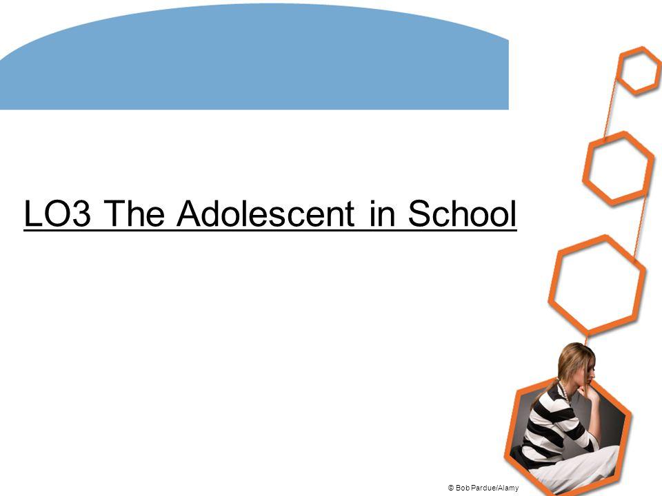 LO3 The Adolescent in School © Bob Pardue/Alamy