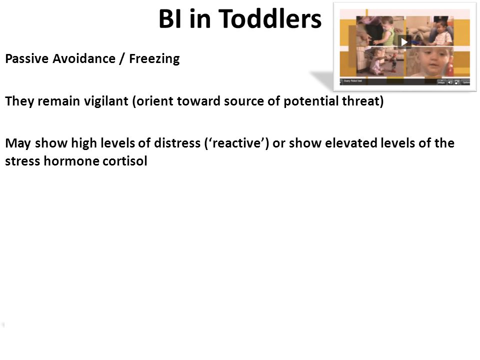 BI in Toddlers Passive Avoidance / Freezing They remain vigilant (orient toward source of potential threat) May show high levels of distress ('reactive') or show elevated levels of the stress hormone cortisol Parallels with AT in monkeys (freezing/cortisol) and BIS (passive avoidance) in adults