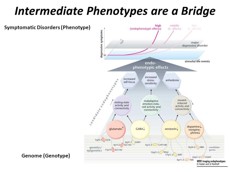 Intermediate Phenotypes are a Bridge Symptomatic Disorders (Phenotype) Genome (Genotype)