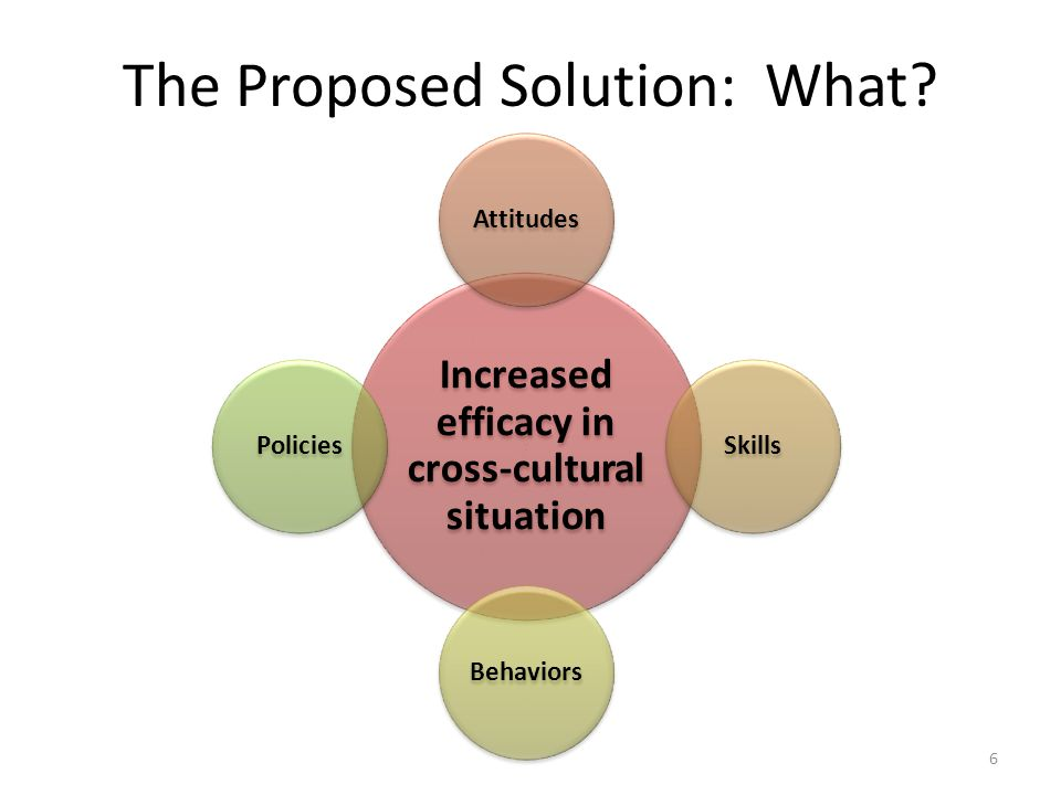 The Proposed Solution: What.