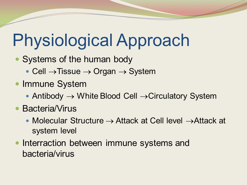 Physiological Approach Systems of the human body Cell  Tissue  Organ  System Immune System Antibody  White Blood Cell  Circulatory System Bacteri