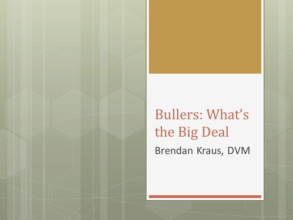 Bullers: What's the Big Deal Brendan Kraus, DVM
