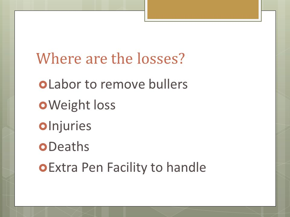 What Causes Bullers.