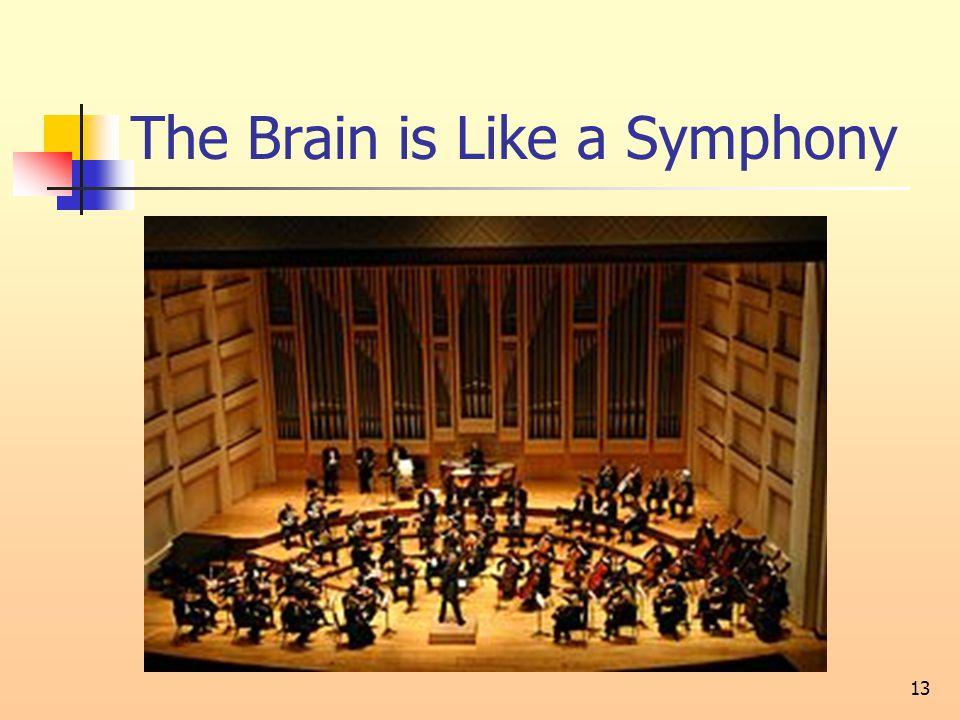 The Brain is Like a Symphony 13