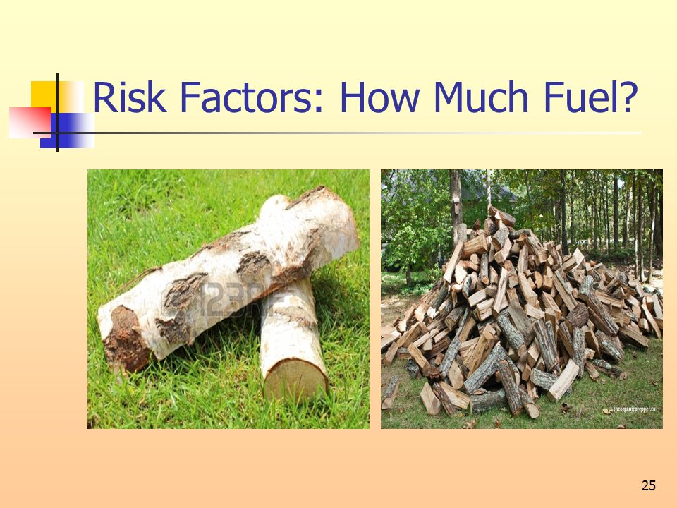 Risk Factors: How Much Fuel? 25