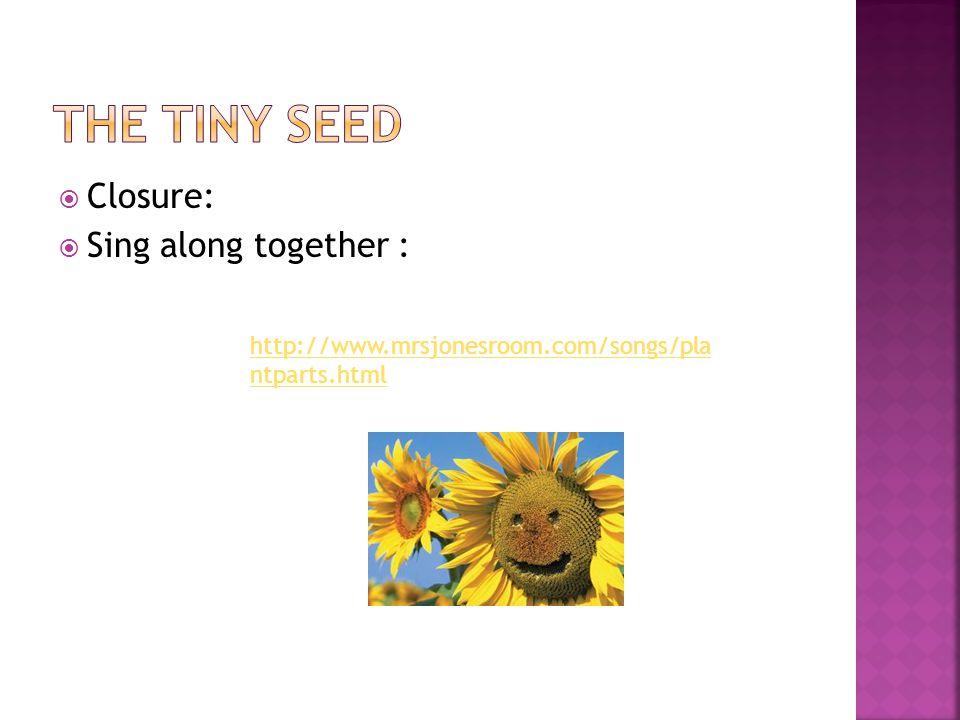 Closure:  Sing along together : http://www.mrsjonesroom.com/songs/pla ntparts.html