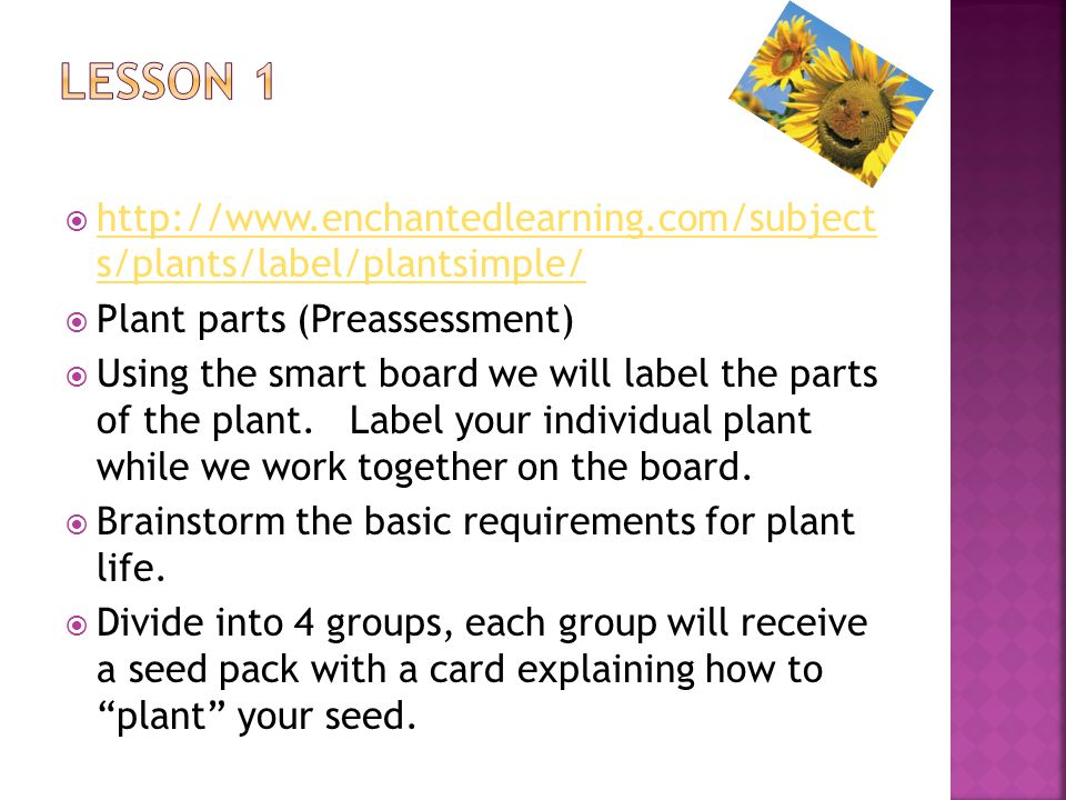  http://www.enchantedlearning.com/subject s/plants/label/plantsimple/ http://www.enchantedlearning.com/subject s/plants/label/plantsimple/  Plant parts (Preassessment)  Using the smart board we will label the parts of the plant.