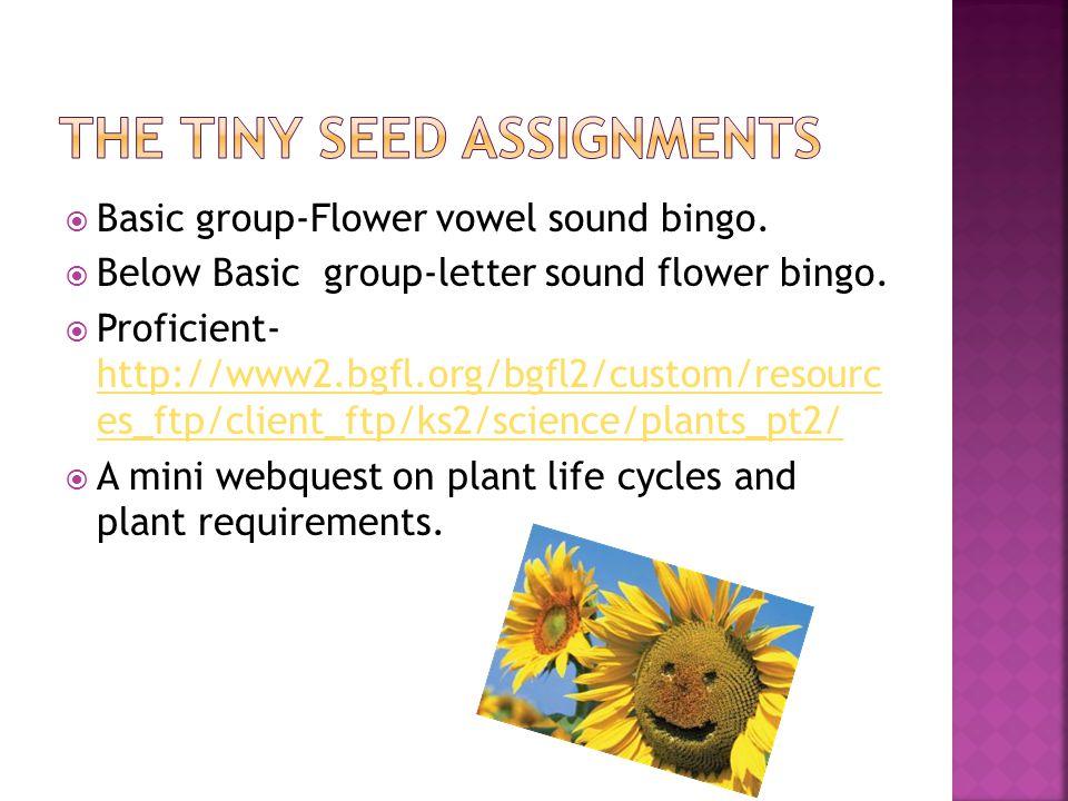  Basic group-Flower vowel sound bingo.  Below Basic group-letter sound flower bingo.