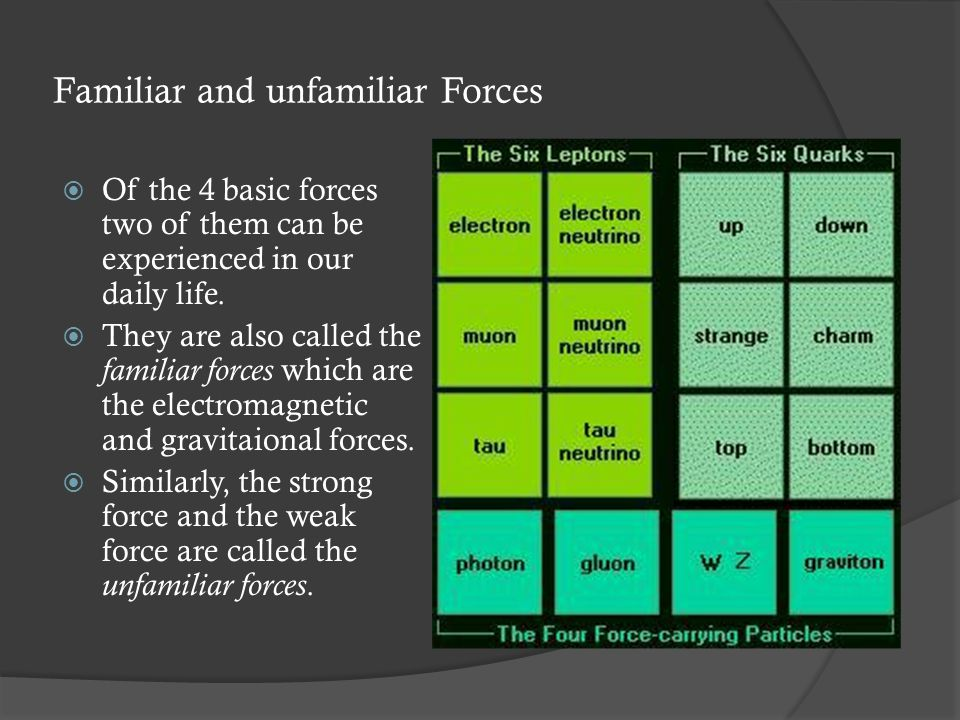 Familiar and unfamiliar Forces  Of the 4 basic forces two of them can be experienced in our daily life.