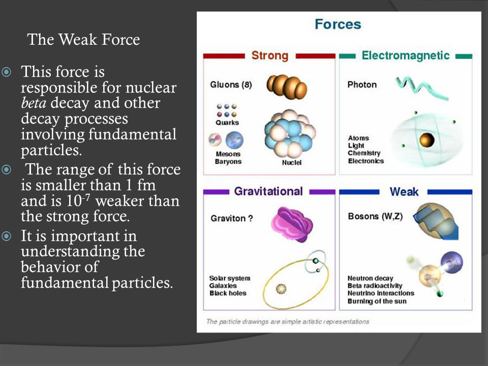 The Weak Force  This force is responsible for nuclear beta decay and other decay processes involving fundamental particles.