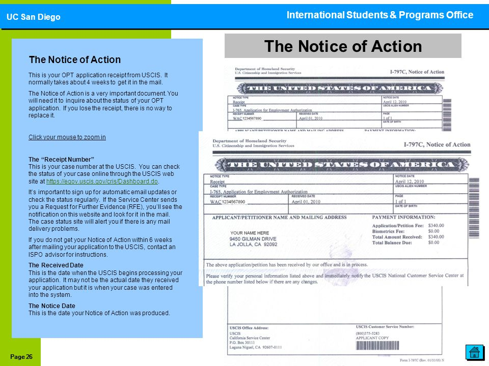 Page 26 The Notice of Action This is your OPT application receipt from USCIS. It normally takes about 4 weeks to get it in the mail. The Notice of Act