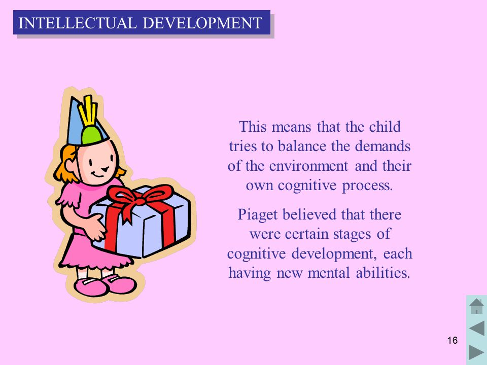 16 This means that the child tries to balance the demands of the environment and their own cognitive process.