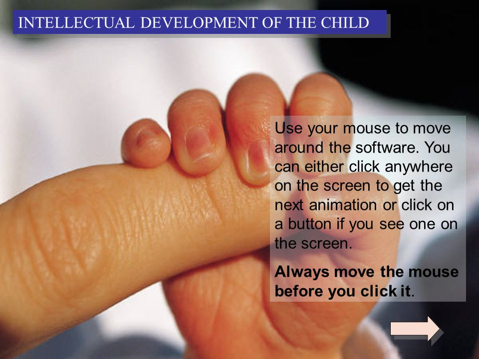 2 Use your mouse to move around the software.