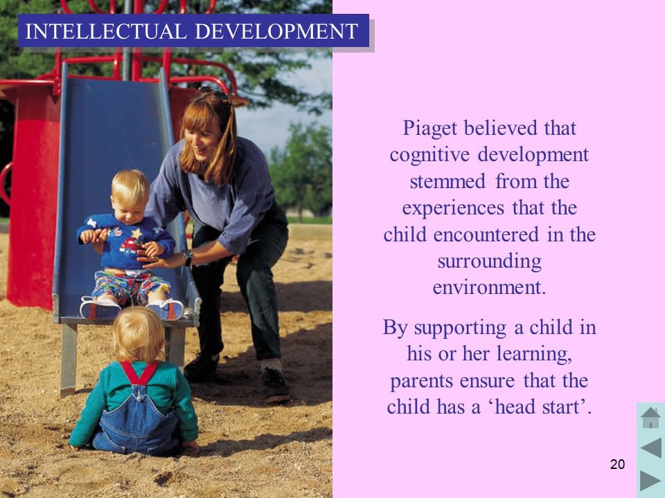 20 Piaget believed that cognitive development stemmed from the experiences that the child encountered in the surrounding environment.