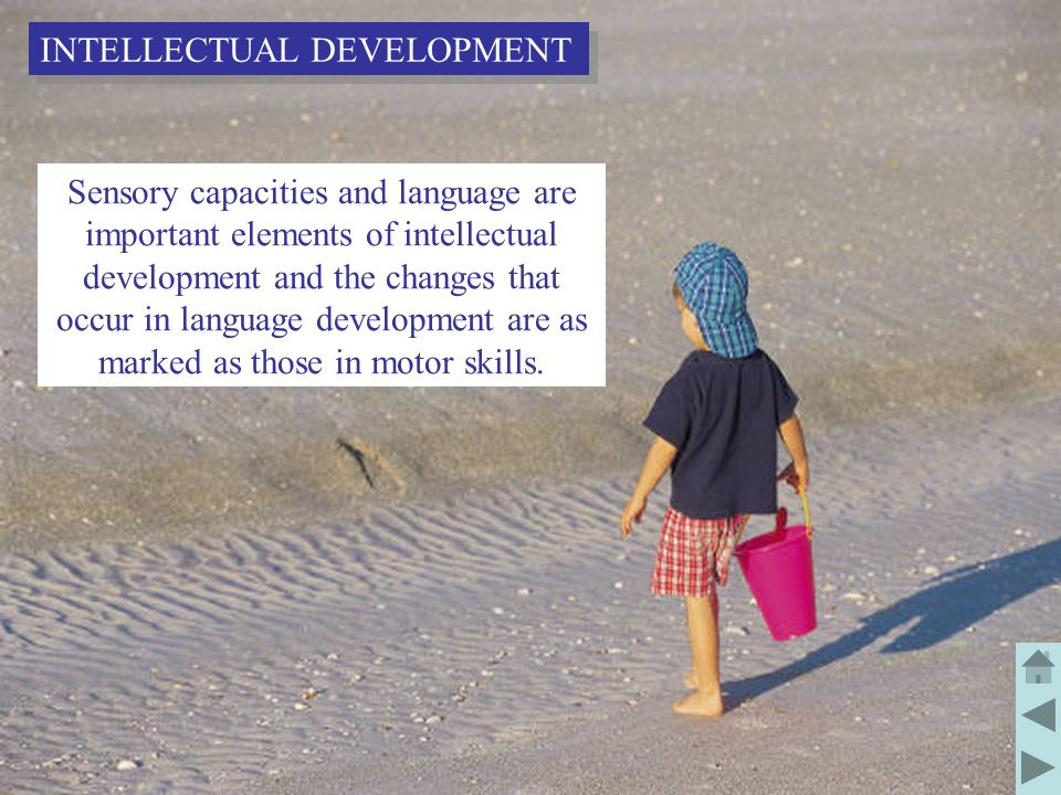 21 Sensory capacities and language are important elements of intellectual development and the changes that occur in language development are as marked as those in motor skills.