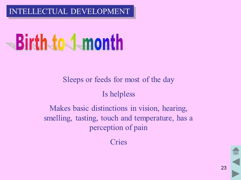 23 Sleeps or feeds for most of the day Is helpless Makes basic distinctions in vision, hearing, smelling, tasting, touch and temperature, has a perception of pain Cries INTELLECTUAL DEVELOPMENT