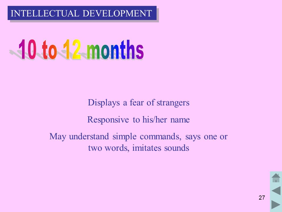 27 Displays a fear of strangers Responsive to his/her name May understand simple commands, says one or two words, imitates sounds INTELLECTUAL DEVELOPMENT