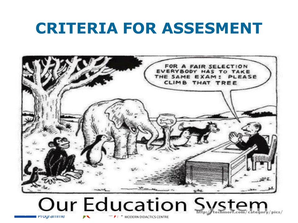 CRITERIA FOR ASSESMENT