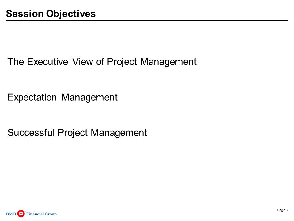Page 3 Session Objectives The Executive View of Project Management Expectation Management Successful Project Management