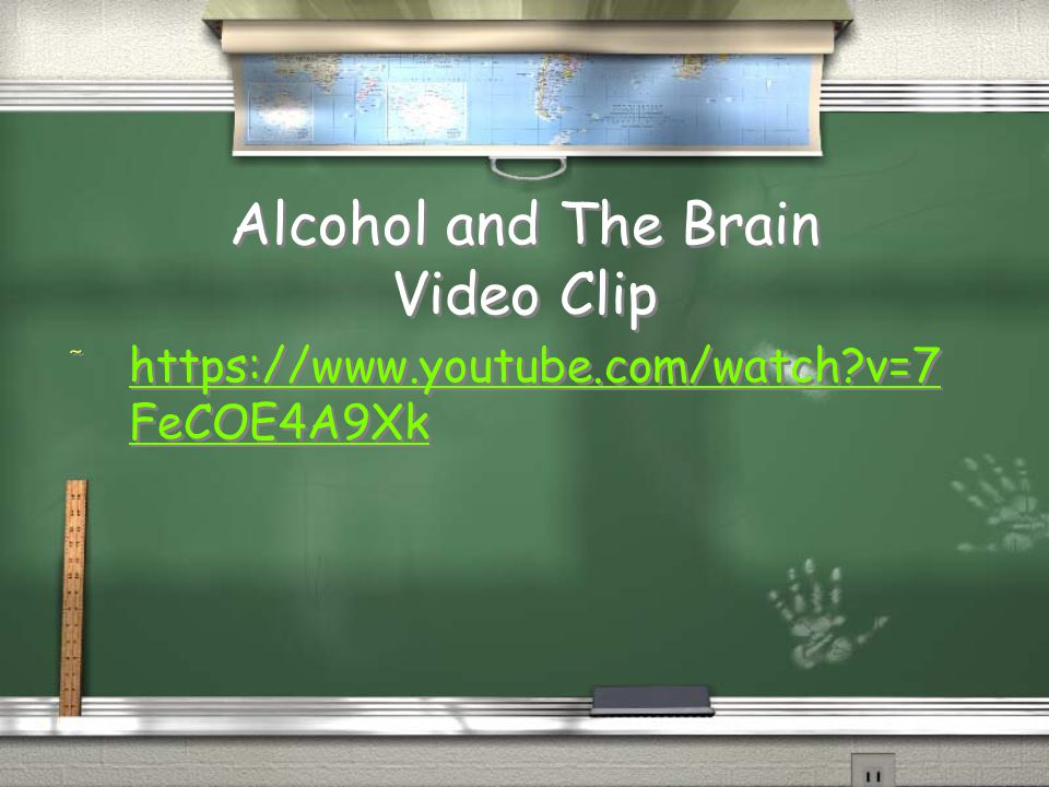 Alcohol and The Brain Video Clip / https://www.youtube.com/watch?v=7 FeCOE4A9Xk https://www.youtube.com/watch?v=7 FeCOE4A9Xk / https://www.youtube.com
