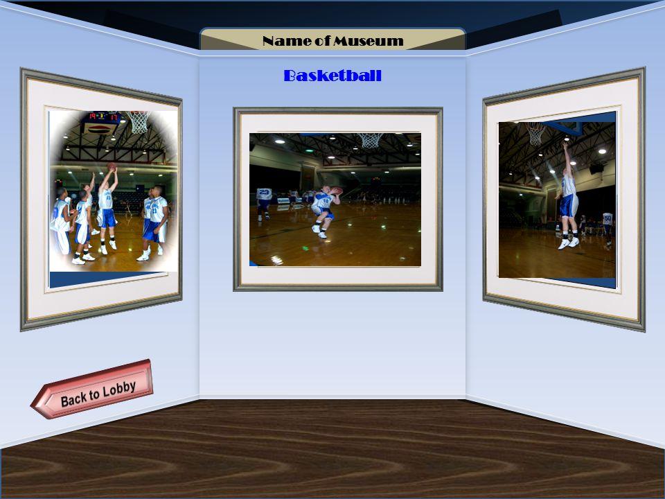Name of Museum Basketball Artifact 3 Artifact 4