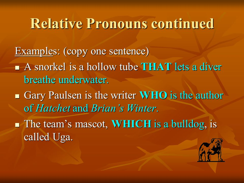 Relative Pronouns continued Examples: (copy one sentence) A snorkel is a hollow tube THAT lets a diver breathe underwater.