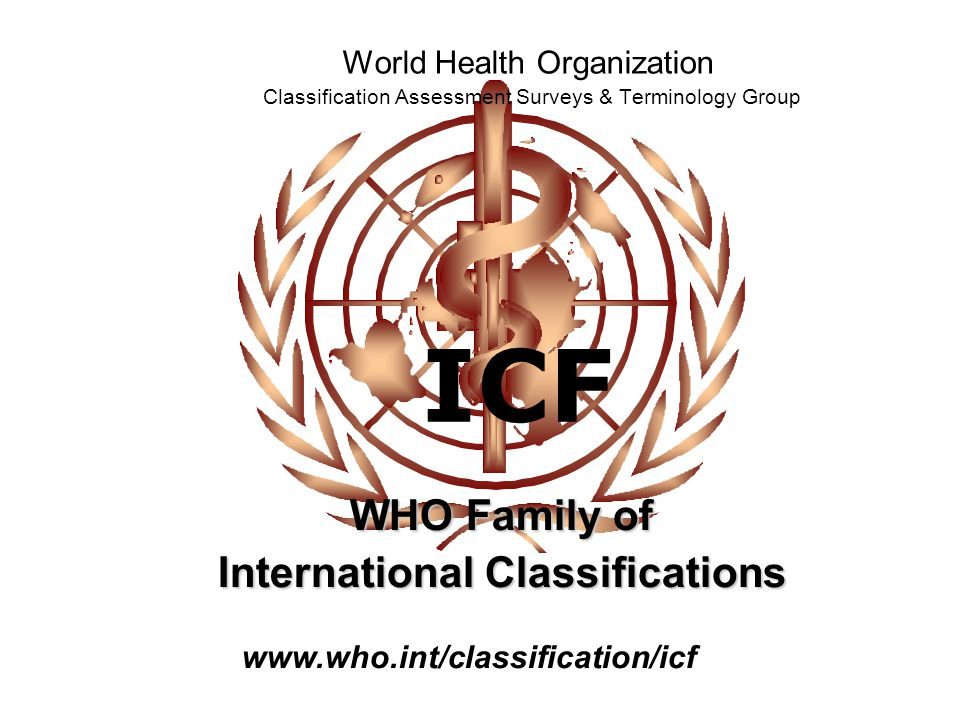 ICF World Health Organization Classification Assessment Surveys & Terminology Group WHO Family of International Classifications www.who.int/classifica