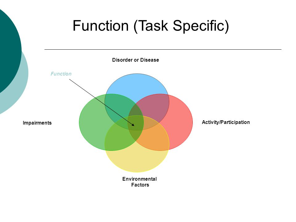 Function (Task Specific) Function